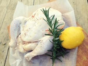 Organic chicken from my special friend Jane